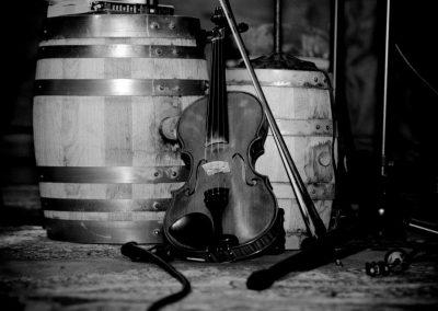 #3 Fiddle
